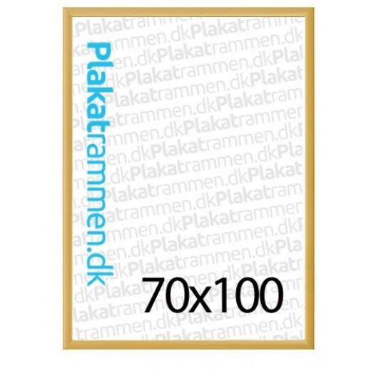 70x100cmguldrammemed25mmprofil-31