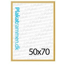 50x70cmguldrammemed25mmprofil-20