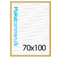 70x100cm guldramme med 25mm profil-20